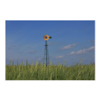 Kansas Country Windmill with a wheat field Art Photo