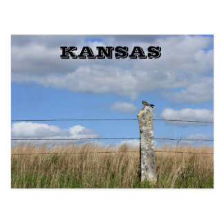 Kansas Hawk on a Lime Stone fence Post. Post Card