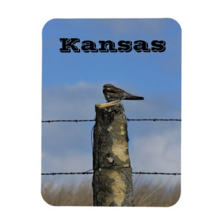 Kansas Hawk on a Limestone Fence Post Magnet