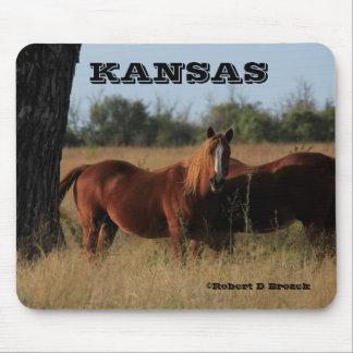 Kansas Horses Mouse Pad!! Mouse Pad