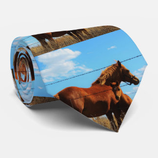 Kansas Horses TIE