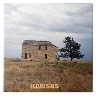 Kansas Limestone Farm House Tile