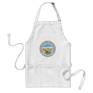 Kansas state seal america republic symbol flag standard apron