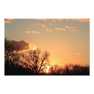 Kansas Tree silhouette, with cloud's Enlargement Photo Art