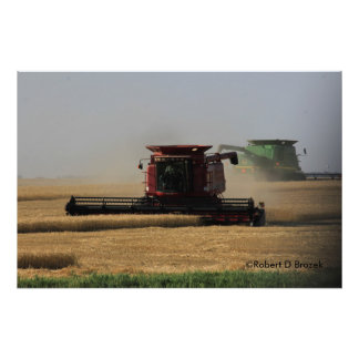 Kansas Wheat Harvest Photo Enlargement