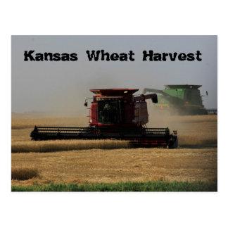 Kansas Wheat Harvest Post Card