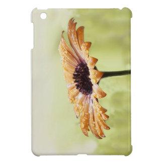 Kapmargerite-01 iPad Mini Case