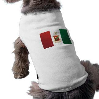 Kappa Sigma Flag Shirt