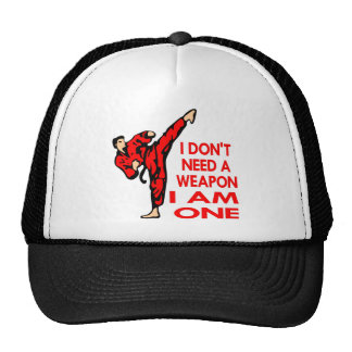 Karate, MMA, I AM A Weapon Mesh Hat