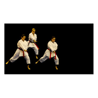 Karate Pack Of Standard Business Cards