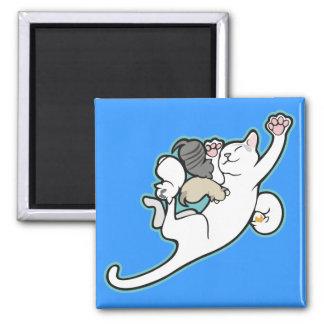Kari and Mythbuster Kittens magnet Refrigerator Magnet