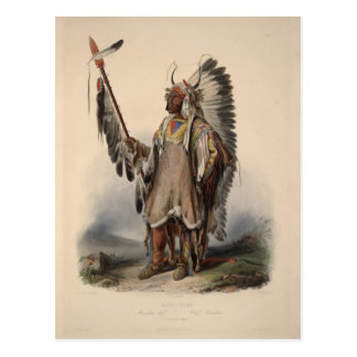 Karl Bodmer - A Mandan chief Postcard