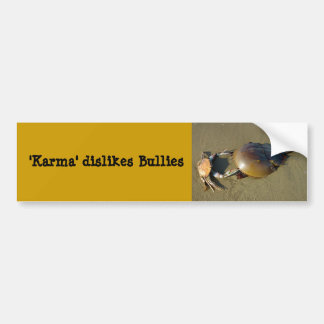 Karma dislikes bullies Bumper Sticker 7