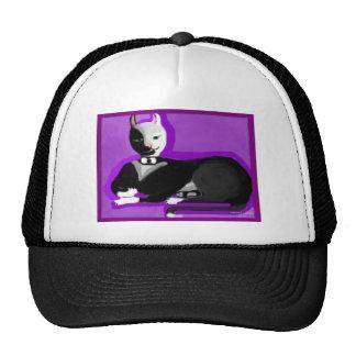 Kat-tastiK Tuxedo Kitty Trucker Hats