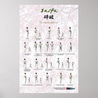Kata Saifa - Goju Ryu version Poster