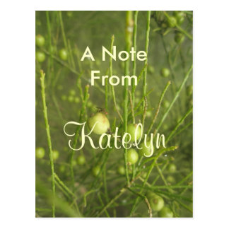 Katelyn Postcard