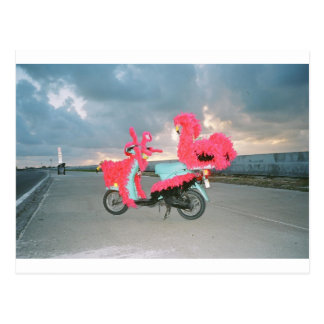 Kathlee's Key West Tacky Scooter Postcard