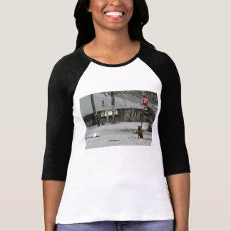 katrina dog t-shirt