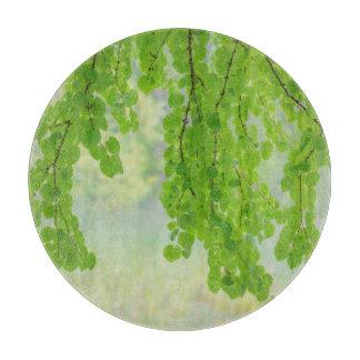 Katsura Tree Limbs in Springtime | Seabeck, WA Cutting Board