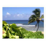Kauai Postcard