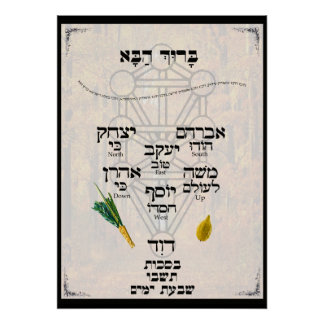 Kavannah for Lulav and Etrog Poster
