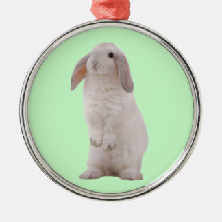 Kawaii Cute Bunny Rabbit Silver-Colored Round Decoration