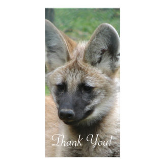 Kawaii Headshot of Baby Wolf Pup with Back Muzzle Photo Card