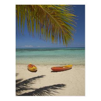 Kayaks on the beach, Plantation Island Resort 2 Postcard