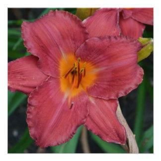 Kazakhstan National Flower Personalized Announcement