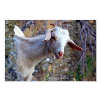 Kea – Cyclades Photo