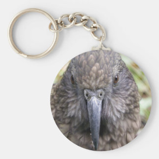 Kea Key Ring