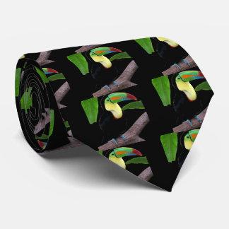 Keel-billed Toucan Tie