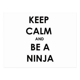 Keep Calm and Be A Ninja Postcard