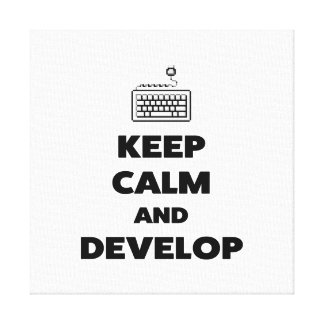 Keep calm and develop canvas print