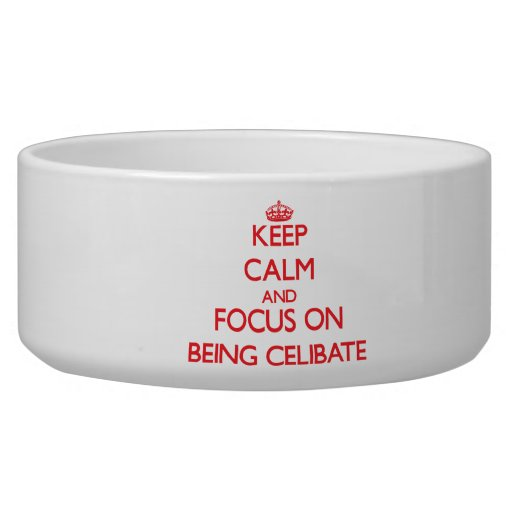 Keep Calm and focus on Being Celibate Dog Food Bowls