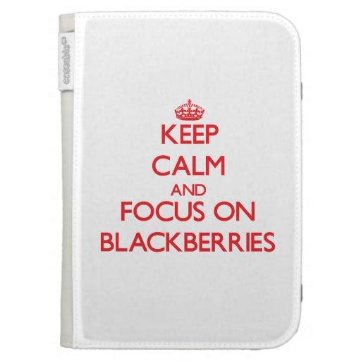Keep Calm and focus on Blackberries Kindle Keyboard Case