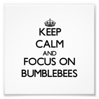 Keep Calm and focus on Bumblebees Art Photo