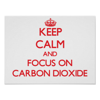 Keep Calm and focus on Carbon Dioxide Posters