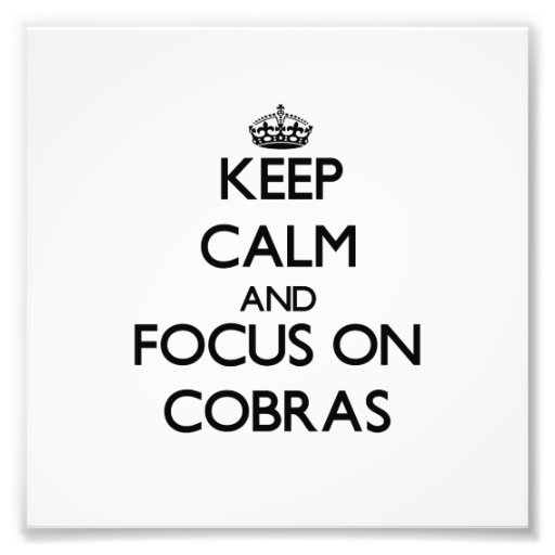 Keep Calm and focus on Cobras Photographic Print