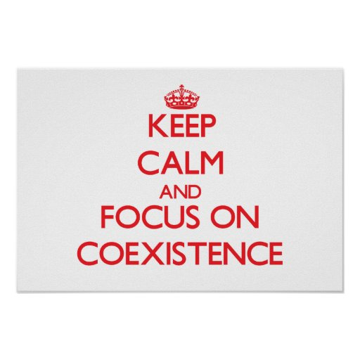 Keep Calm and focus on Coexistence Poster