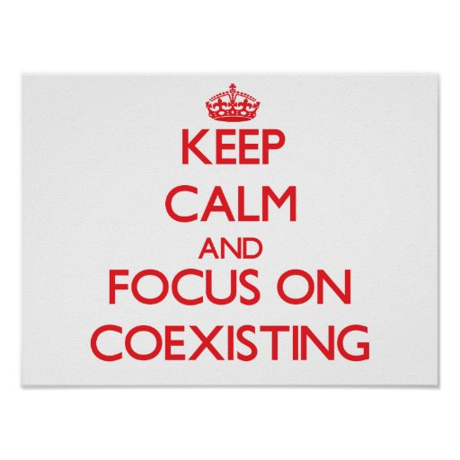 Keep Calm and focus on Coexisting Posters