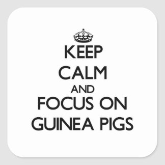 Keep Calm and focus on Guinea Pigs Square Sticker
