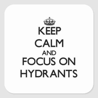 Keep Calm and focus on Hydrants Square Sticker