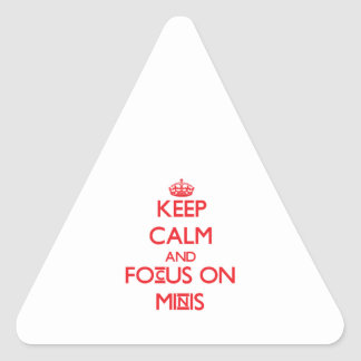 Keep Calm and focus on Minis Triangle Sticker