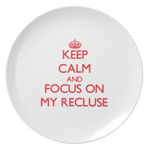 Keep Calm and focus on My Recluse Party Plate