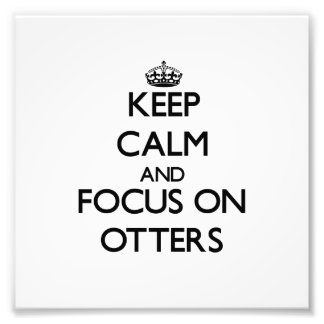 Keep Calm and focus on Otters Photograph