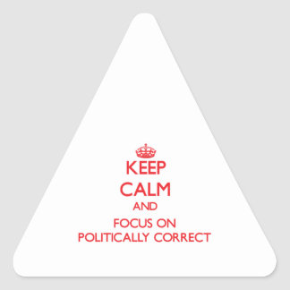 Keep Calm and focus on Politically Correct Triangle Sticker