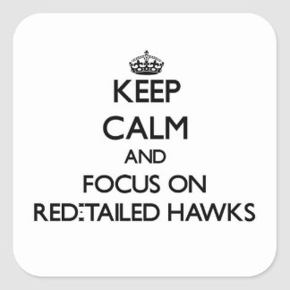 Keep calm and focus on Red-Tailed Hawks Square Sticker