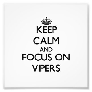 Keep Calm and focus on Vipers Art Photo