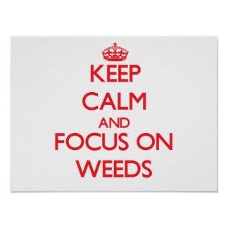 Keep Calm and focus on Weeds Poster